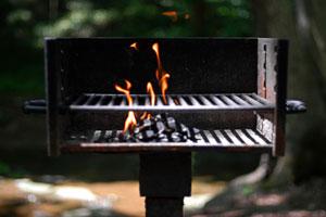 BBQ.fire