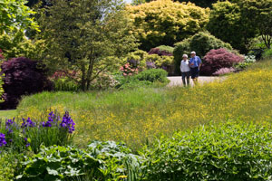 Visitors-walking-by-the-Alpine-Meadow-in-spring-at-RHS-Garden-Wisley