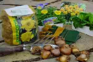 Time-to-plant-spring#B1C11E