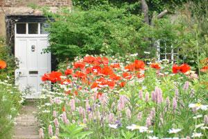 crook-hall-garden