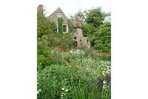 garden-image-3
