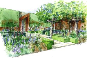 Chris-Beardshaw-Morgan-Stanley-Healthy-Cities-Garden-Illustration--1