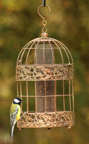 Keep-bird-feeders-to#C09FF9