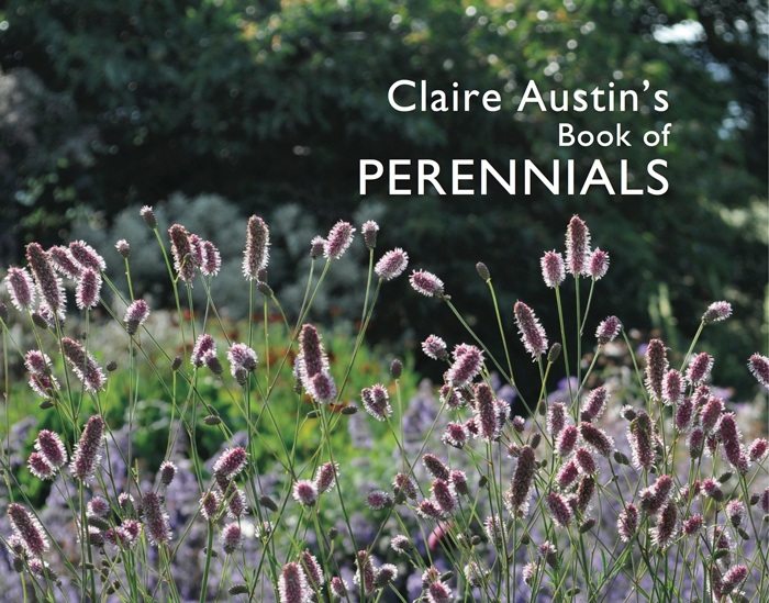 banner-Claire-Austin's-Book-of-Perennials---front-cover