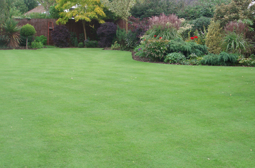 middle-Mow-&-feed-for-a-great-looking-lawn