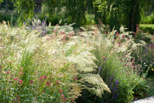 plant9ng-Detail+of+Garden+Design+by+Marcus+Barnett+-+Marcus+Barnett+_5_