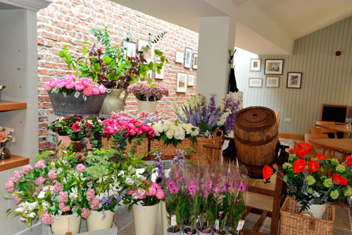 middle-Flowers-in-the-shop