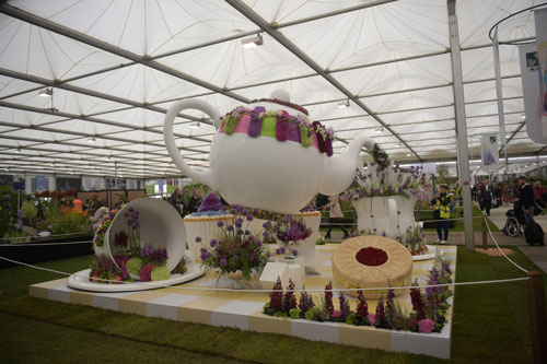 middle-BJC_RHS_Chelsea_Day1-0063