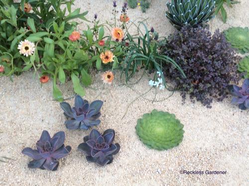 maths-garden-