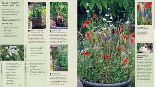 1-middle-New-Wild-Garden_spread5
