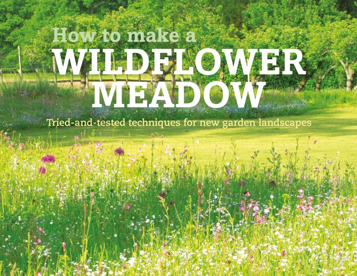 banner-wildflowermeadow266x470-5mmfrtlge