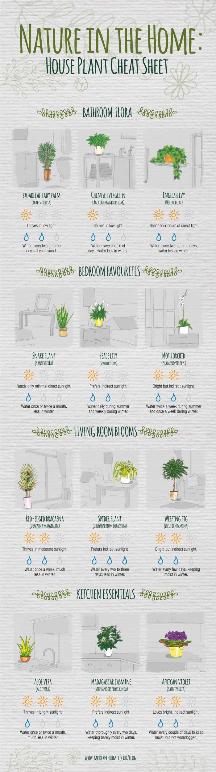indoor-plant-care-cheatsheet-full-700px