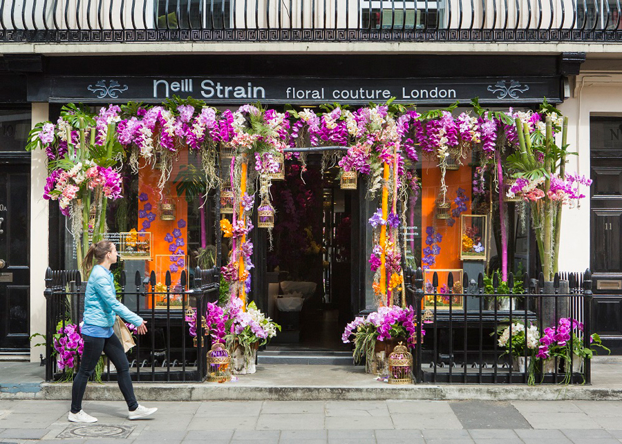 Image result for chelsea in bloom 2017