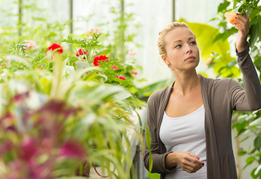Online provider to offer rhs gardening qualification for Gardening qualifications